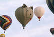 Family-Friendly Airborne Festivals