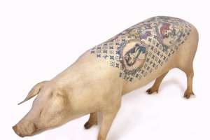 Tattooed Pigs at Frieze Art Fair (UPDATE)