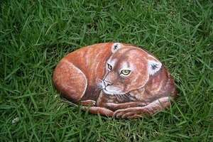 Hand-Painted Pet Rocks