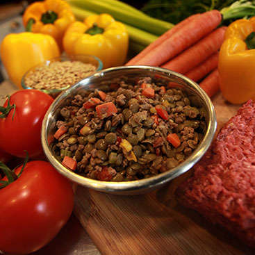 Gourmet Dog Meals - Just Food for Dogs Serves Only the Best All-Natural Dog Food