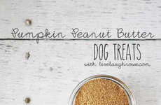 Pumpkin Doggie Snacks - This Homemade Dog Treat Will Have Your Pup Drooling