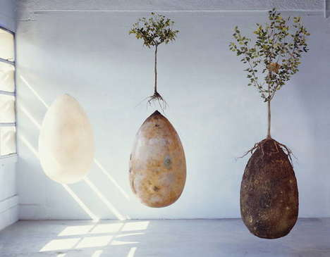 Eco-Friendly Burial Pods - Capsula Mundi Creates Coffin Containers that Act as Fertilizer for Trees