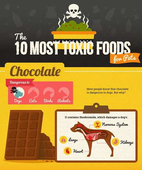 Unsafe Food Guides - This Infographic Lists Dangerous Food for Cats, Dogs and Other Domestic Pets