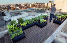 Urban Vegetable Gardens