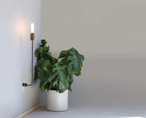 Plug-Propped Lamps