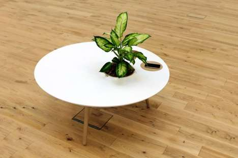 Built-In Planter Furniture - Ben Robinson Designs a Minimalist Coffee Table with Embedded Bowls