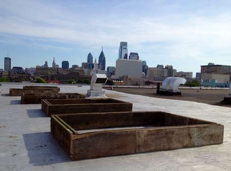 Fruitful Rooftop Gardens - Cloud 9 is an Exciting New Philadelphia Urban Farming Initiative