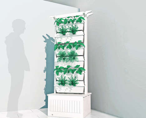 Hydroponic Home Gardens