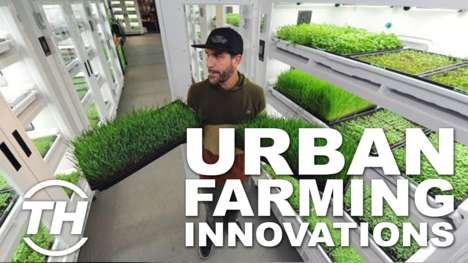 Urban Farming Innovations - Jana Pijak Discusses Her Top Picks for City Gardening Solutions