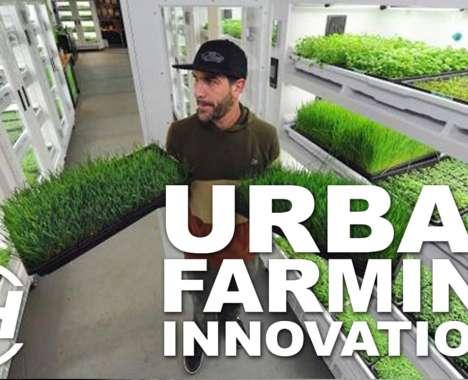 Urban Farming Innovations