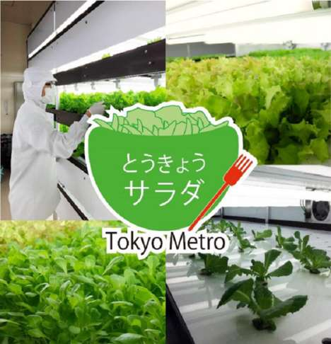 Metro Vegetable Gardens - This Hydroponic Tokyo Garden Takes Up Space on the Subway Line
