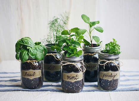 DIY Mason Jar Gardens - This Home Herb Garden Tutorial is Practical, Eco-Conscious and Adorable