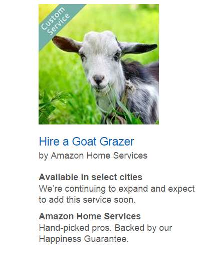 Goat Landscaper Services - Amazon Home's Lawn Care Service Lets Homeowners Rent Goats for Grazing