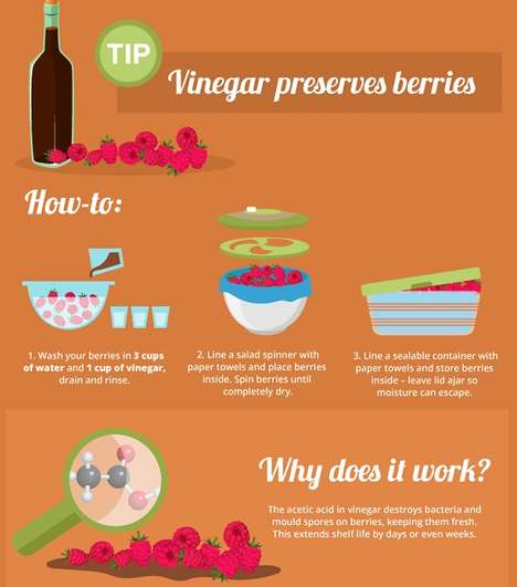 Freshness-Extending Guides - This Eco Infographic Offers Tips on Making Fresh Food Last Longer