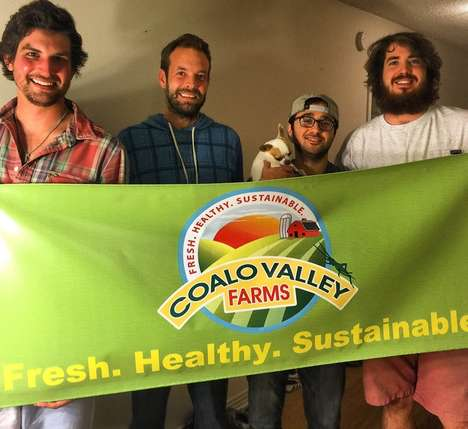 Insect Protein Powders - Coalo Valley Farms Wants to Make Cricket Powder a Household Staple