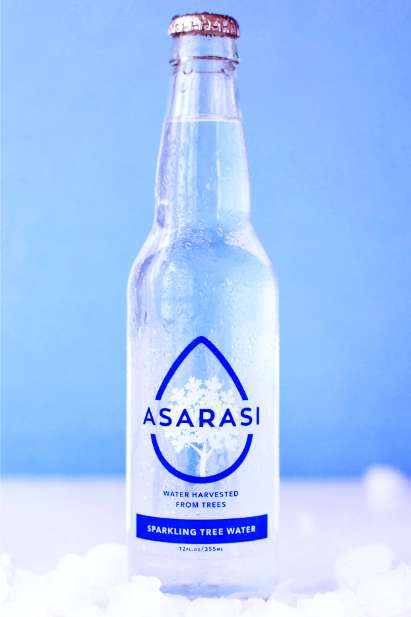 Tree Water Beverages - Asarasi's New Tree-Filtered Water Comes Straight from the Maple Tree