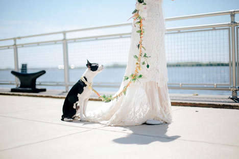 Homemade Bridal Dog Leashes - This DIY Dog Leash Makes Pets of Honor Look Extra Festive at a Wedding