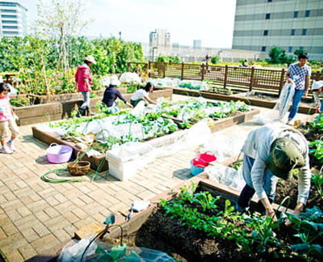 55 Examples of Urban Garden Innovations