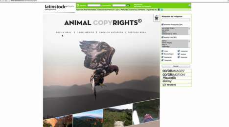 Animal Photographer Databases - WWF's 'Animal Copyrights' Turns Wild Creatures into Creators