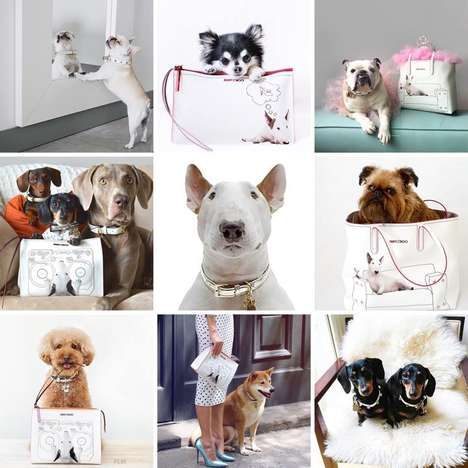 User-Generated Couture Ads - The 'Choo Hounds' Accessory Ad Stars Jimmy Choo's Most Furry Followers