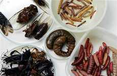 Bugs as Everyday Delicacies