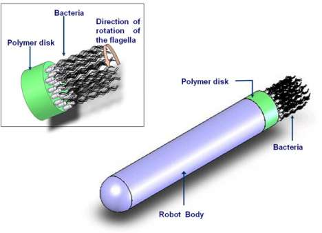 Revolutionizing Intravenous Nanotechnology
