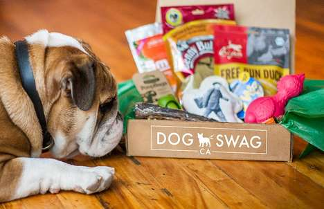 Canine Subscription Services - 'Dog Swag' Delivers Monthly Treats and Accessories for Your Dog