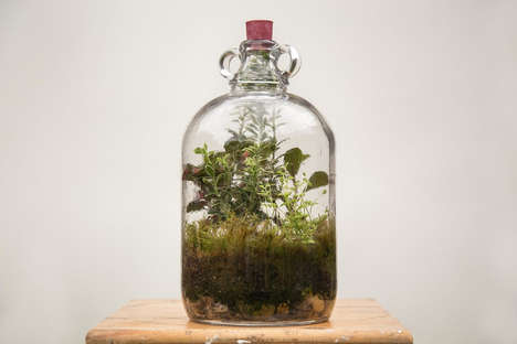 Self-Sustaining Terrariums - Emma Sibley & Tom Murphy Create Beautiful Designs that Water Themselves