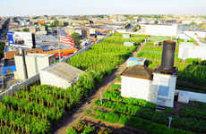 Urbanized Rooftop Farms - This 42,000 Square Foot Rooftop Farm Was Created in New York