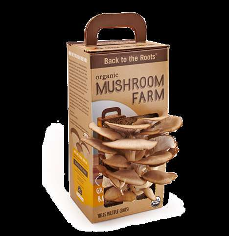 Miniature Mushroom Gardens - The 'Back to the Roots' Kit Lets You Grow Mushrooms Right from the Box