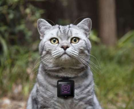 20 Examples of Wearables for Pets