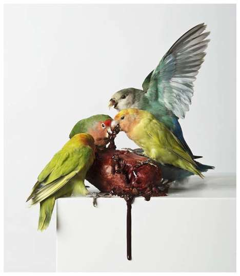 Morbid Taxidermy Art - Polly Morgan Depicts Triumph of Life Over Death in Her Work