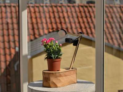 Selfie-Taking Plants - This Potted Plant Snaps Its Own Selfies and Shares Them on Facebook