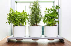 Self-Watering Herb Pots - The 'UHerb' Eliminates the Hassle of Regular Watering