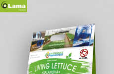 Aquaponic Lettuce Packaging