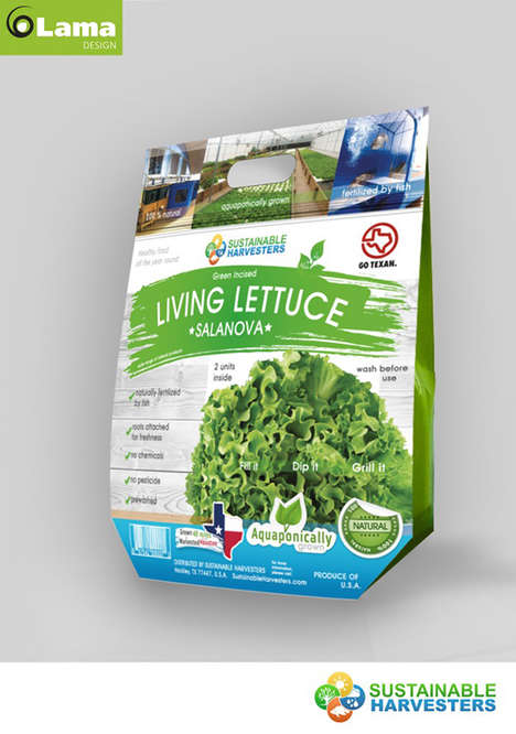 Aquaponic Lettuce Packaging - Living Lettuce's Produce Package Celebrates Health & Sustainability