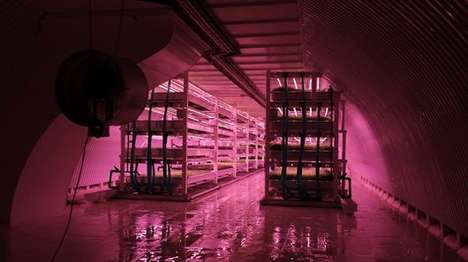 Tunnel-Based Farms - 'Growing Underground' is the World's First Urban Underground Farm