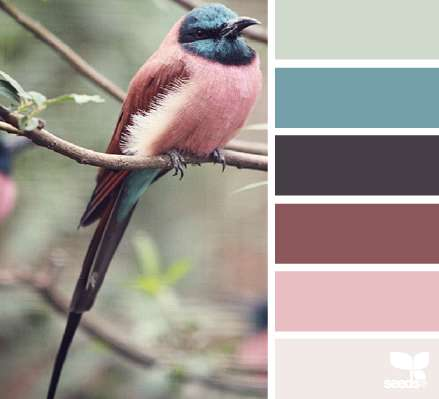 Nature-Inspired Color Palettes - These Soothing Color Swatches are Inspired by Nature Photography