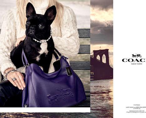 Celebrity Pet Campaigns