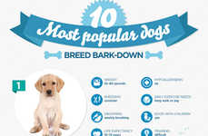 Popular Dog Breed Guides