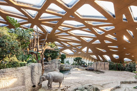 Elephant Sanctuary Domes - This Elephant House Features a Wooden Roof and Swimming Pools