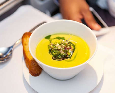Gourmet Airplane Meals