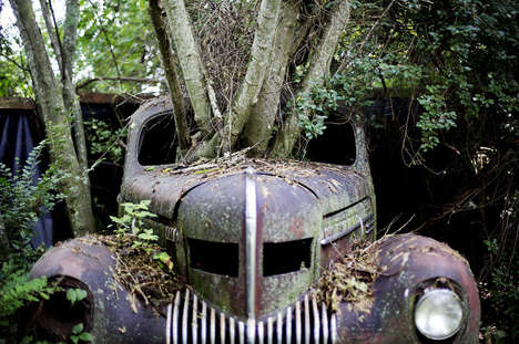 Car Graveyard Photography - David Goldman's Auto Photography Essay 'Old Car City' is for Car Junkies