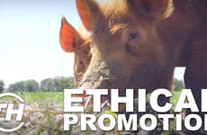 Ethical Promotion - Laura McQuarrie Highlights Four Winning Ethical Marketing Campaigns