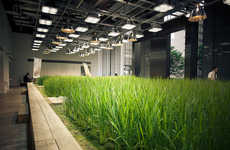 Eco Garden Offices - This Corporate Office Building Features a Sustainable Urban Garden