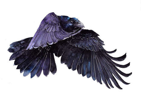 Watercolor Bird Portraits - These Elegant Paintings Feature Birds from Local and Exotic Places