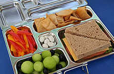 Sectional Lunchbox Trays