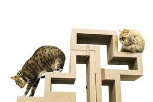 This Modular Cat Furniture is Modern Looking and Design-Oriented