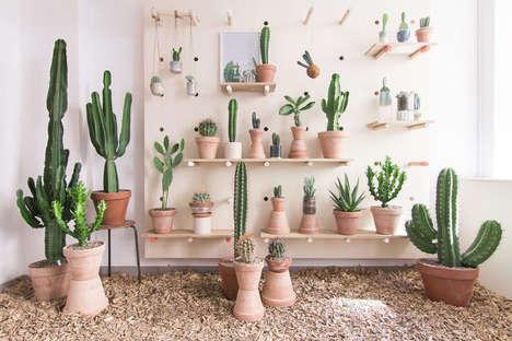 Succulent Retail Concepts - Kaktus Kobenhavn is a Cactus-Centric Lifestyle Shop in Copenhagen