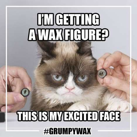 Internet Meme Wax Statues - Grumpy Cat is Getting a Statue at Madame Tussauds